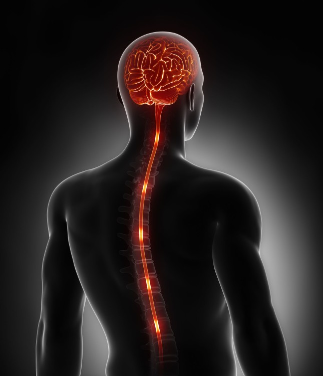 epidural steroid injection cervical spine side effects